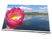 AU Optronics B173RW01 V.0 17.3in. WXGA++ 1600x900 Widescreen
